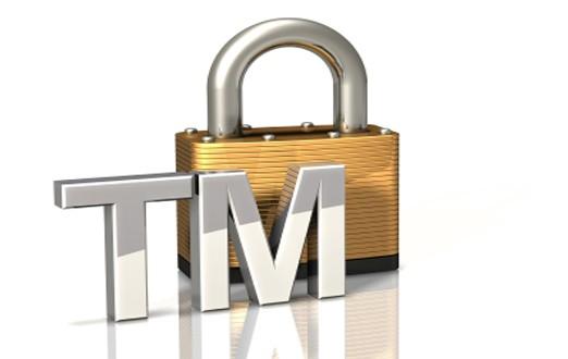 Внесение товарного знака в Таможенный реестр (ТРОИС)